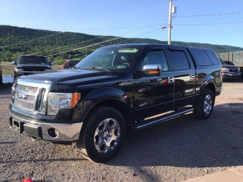 2010 Ford F-150 for sale at Troys Auto Sales in Dornsife PA