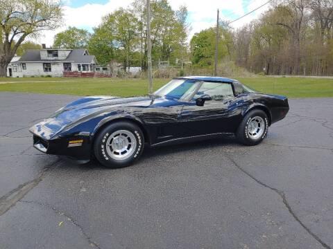 1980 Chevrolet Corvette for sale at Depue Auto Sales Inc in Paw Paw MI