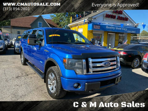 2013 Ford F-150 for sale at C & M Auto Sales in Detroit MI