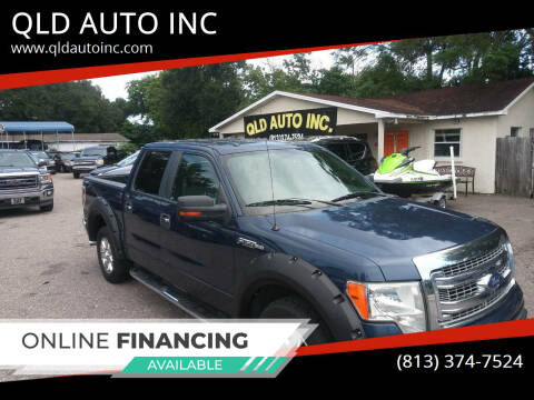 2013 Ford F-150 for sale at QLD AUTO INC in Tampa FL