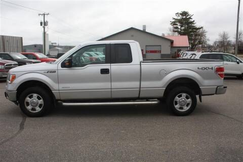 2011 Ford F-150 for sale at SCHMITZ MOTOR CO INC in Perham MN
