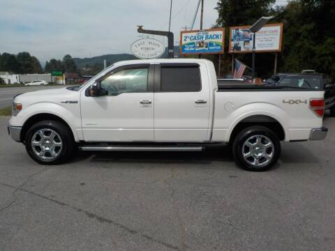 2014 Ford F-150 for sale at EAST MAIN AUTO SALES in Sylva NC