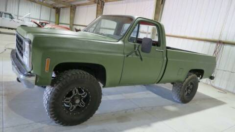1980 Chevrolet C/K 10 Series for sale at Classic Car Deals in Cadillac MI