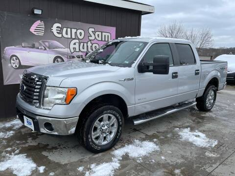 2012 Ford F-150 for sale at Euro Auto in Overland Park KS