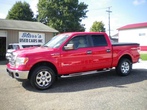 2013 Ford F-150 for sale at Starrs Used Cars Inc in Barnesville OH