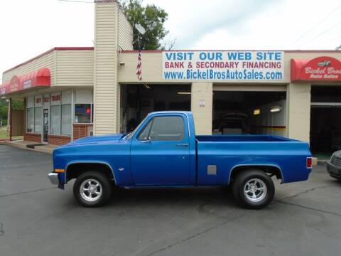 1981 Chevrolet C/K 10 Series for sale at Bickel Bros Auto Sales, Inc in Louisville KY