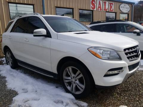 2014 Mercedes-Benz M-Class for sale at W V Auto & Powersports Sales in Cross Lanes WV