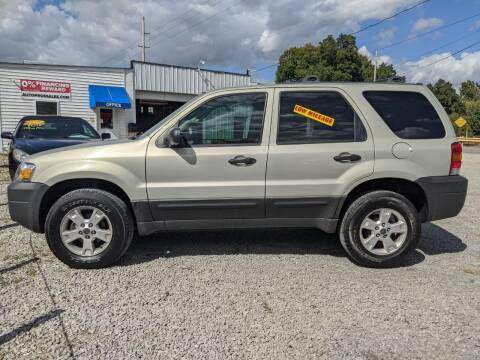 2005 Ford Escape for sale at AUTO PROS SALES AND SERVICE in Belleville IL