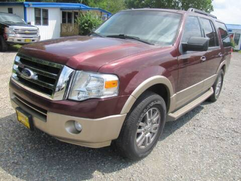 2011 Ford Expedition for sale at Auto Plaza Motors in Pittsburg TX