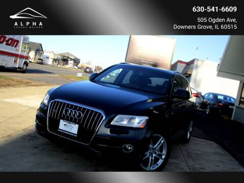 2013 Audi Q5 for sale at Alpha Luxury Motors in Downers Grove IL