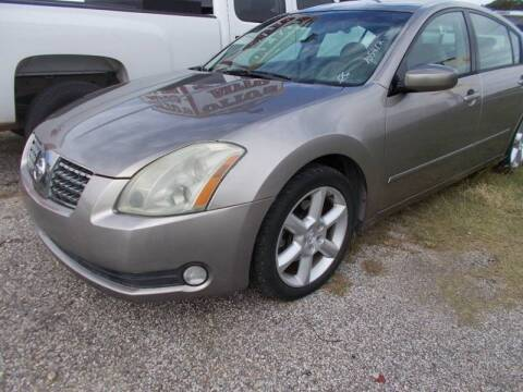 2006 Nissan Maxima for sale at OTTO'S AUTO SALES in Gainesville TX
