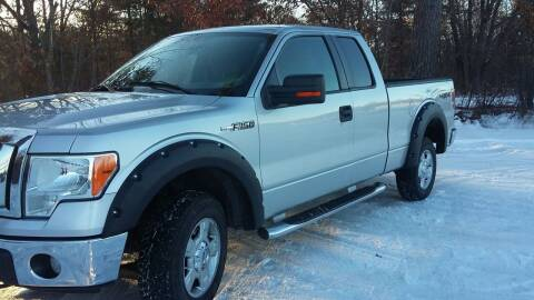 2010 Ford F-150 for sale at Expressway Auto Auction in Howard City MI