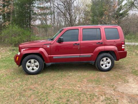 2011 Jeep Liberty for sale at Expressway Auto Auction in Howard City MI