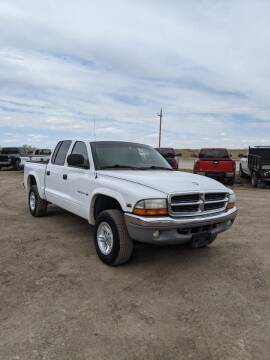 2000 Dodge Dakota for sale at HORSEPOWER AUTO BROKERS in Fort Collins CO