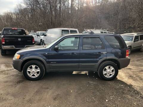 2002 Ford Escape for sale at Compact Cars of Pittsburgh in Pittsburgh PA