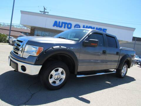 2009 Ford F-150 for sale at Auto House Motors in Downers Grove IL