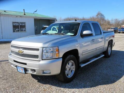 2011 Chevrolet Silverado 1500 for sale at Low Cost Cars in Circleville OH