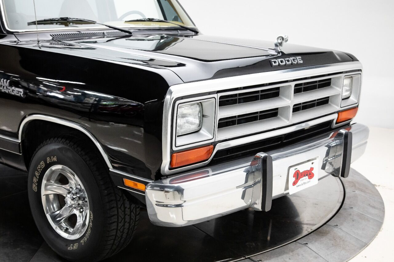 1989 Dodge Ramcharger 9