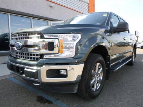 2018 Ford F-150 for sale at Torgerson Auto Center in Bismarck ND
