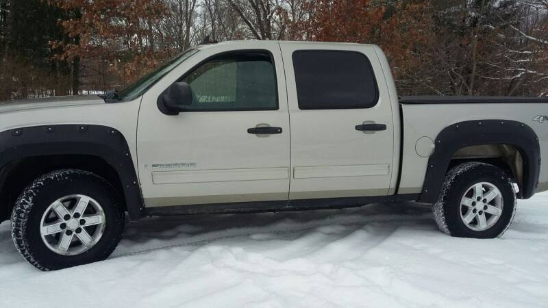 2008 GMC Sierra 1500 for sale at Expressway Auto Auction in Howard City MI