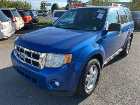 2011 Ford Escape for sale at Diana Rico LLC in Dalton GA