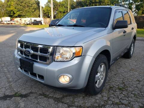 2010 Ford Escape for sale at Flex Auto Sales in Cleveland OH