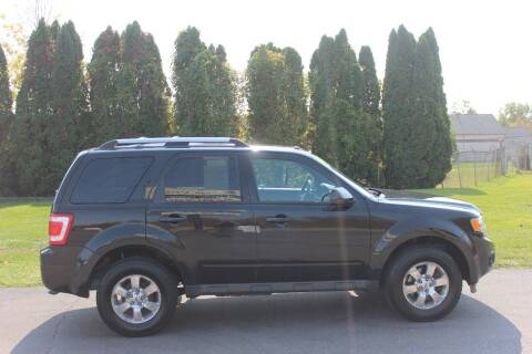 2011 Ford Escape for sale at D & B Auto Sales LLC in Washington Township MI