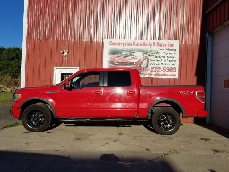 2009 Ford F-150 for sale at Countryside Auto Body & Sales, Inc in Gary SD