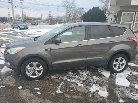 2014 Ford Escape for sale at Towne Auto Sales in Medina OH