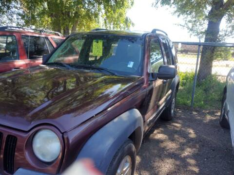 2004 Jeep Liberty for sale at PYRAMID MOTORS - Fountain Lot in Fountain CO