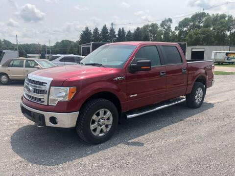 2014 Ford F-150 for sale at KUEHN AUTO SALES in Stanton NE