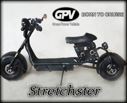2020 STRECHSTER E for sale at Alma Car Sales in Miami FL