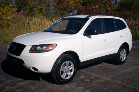 2009 Hyundai Santa Fe for sale at Action Auto Wholesale - 30521 Euclid Ave. in Willowick OH