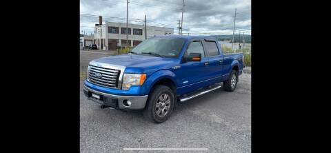 2011 Ford F-150 for sale at QUALITY AUTOS in Hamburg NJ
