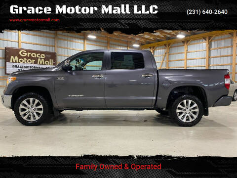 2014 Toyota Tundra for sale at Grace Motor Mall LLC in Traverse City MI