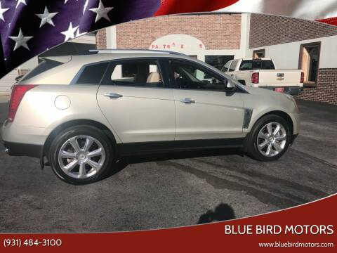 2013 Cadillac SRX for sale at Blue Bird Motors in Crossville TN