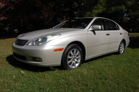 2002 Lexus ES 300 for sale at New Hope Auto Sales in New Hope PA