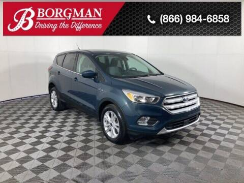 2019 Ford Escape for sale at BORGMAN OF HOLLAND LLC in Holland MI