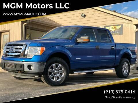 2013 Ford F-150 for sale at MGM Motors LLC in De Soto KS
