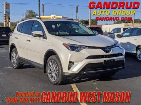 2017 Toyota RAV4 for sale at GANDRUD CHEVROLET in Green Bay WI