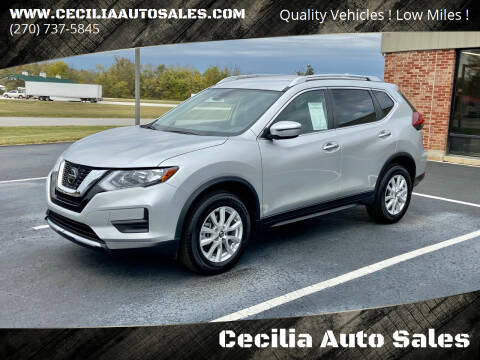 2019 Nissan Rogue for sale at Cecilia Auto Sales in Elizabethtown KY