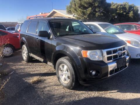 2011 Ford Escape for sale at Top Gun Auto Sales, LLC in Albuquerque NM