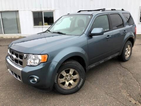 2010 Ford Escape for sale at STATELINE CHEVROLET BUICK GMC in Iron River MI