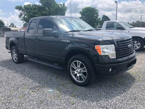 2014 Ford F-150 for sale at RAYMOND TAYLOR AUTO SALES in Fort Gibson OK