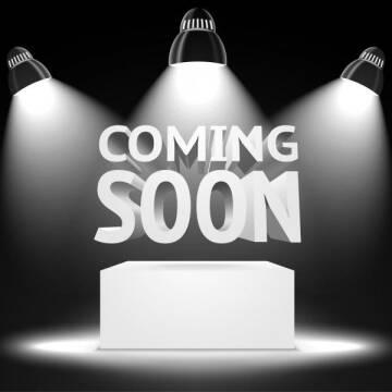 2015 Honda CR-V for sale at MANN MOTORS in Albert Lea MN