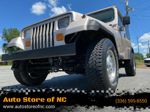 1995 Jeep Wrangler for sale at Auto Store of NC in Walkertown NC