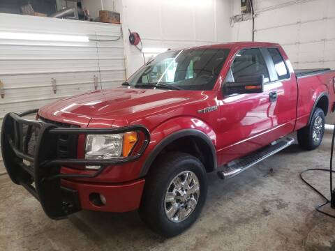 2010 Ford F-150 for sale at Jem Auto Sales in Anoka MN
