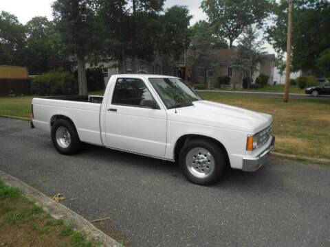 1987 Chevrolet S-10 for sale at Classic Car Deals in Cadillac MI