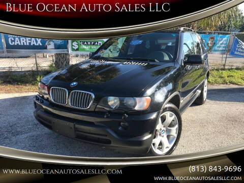 2002 BMW X5 for sale at Blue Ocean Auto Sales LLC in Tampa FL