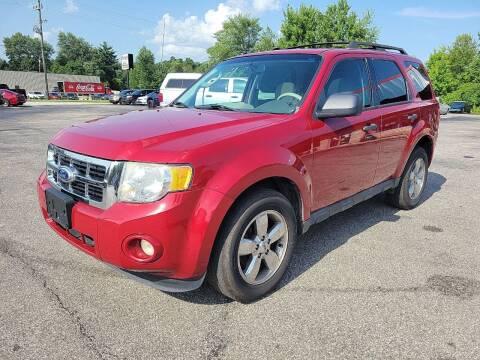 2011 Ford Escape for sale at Cruisin' Auto Sales in Madison IN